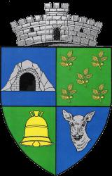 Primăria Poienarii de Muscel